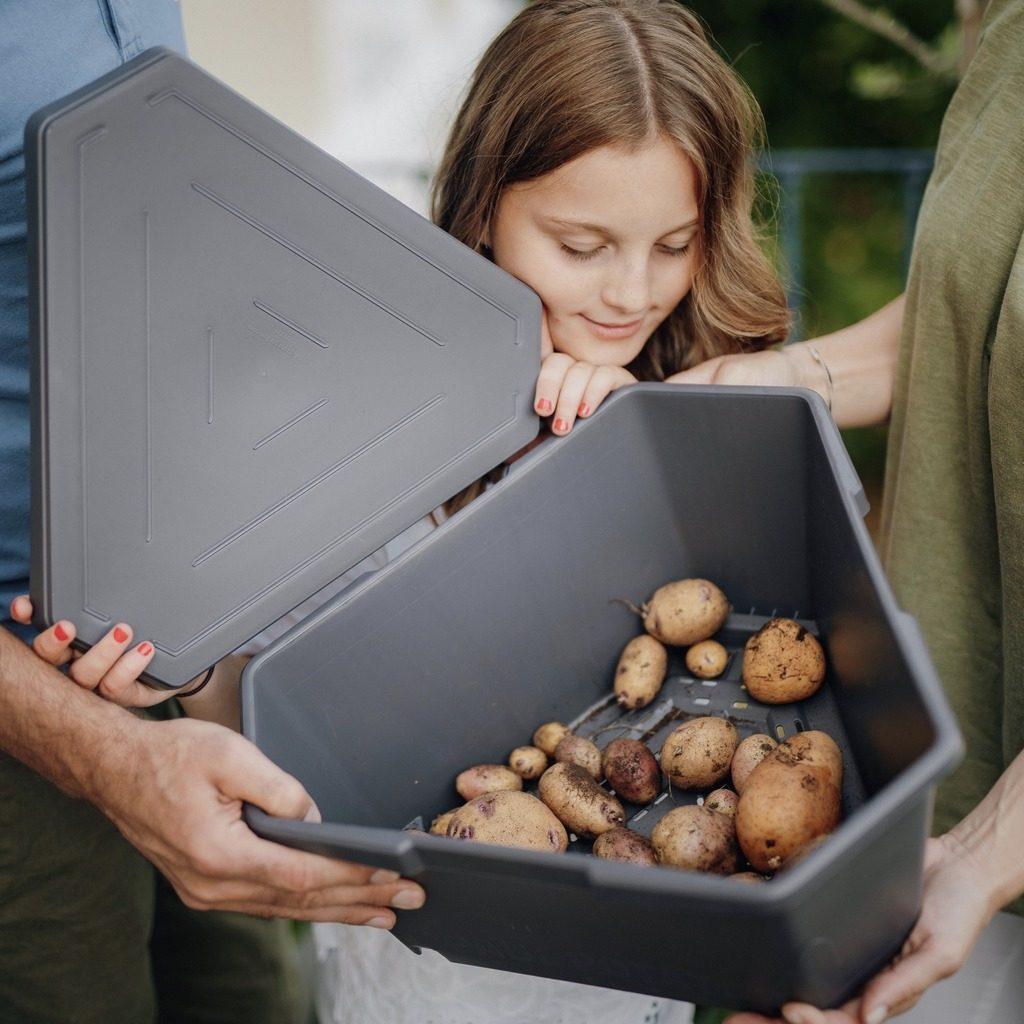 Kartoffeln in PAUL POTATO lagern