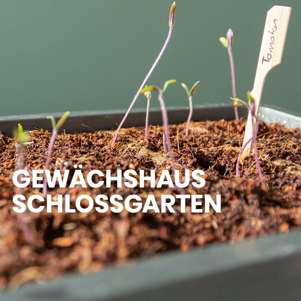 Schlossgarten Anleitung