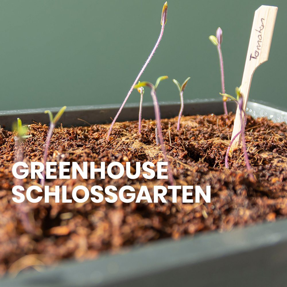 Greenhouse How-to