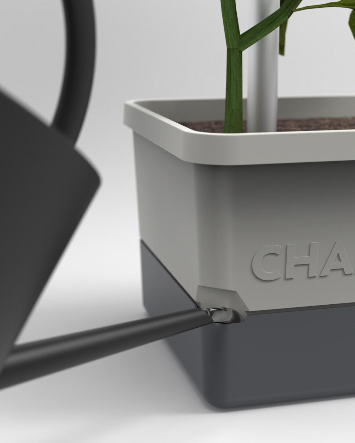 Charly-Chili-Gießen