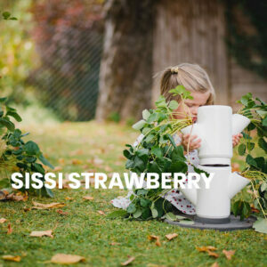 SISSI-STRAWBERRY-Anleitung
